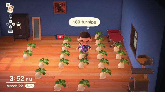 Animal-Crossing-New-Horizons-Where-to-Put-Turnips