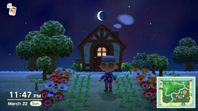 Animal-Crossing-New-Horizons-What-to-do-with-Flowers