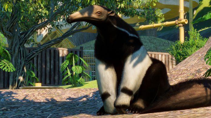 Le pack Amérique du Sud de Planet Zoo est une déception si vous aimez les scénarios