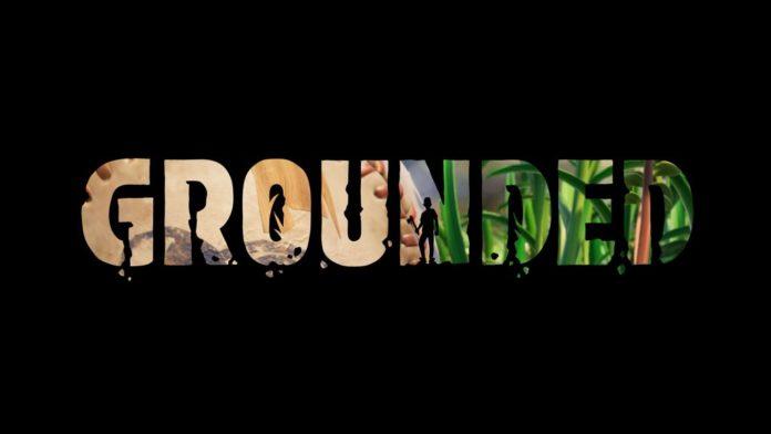 Obsidian Entertainment publie une première bande-annonce pour Grounded
