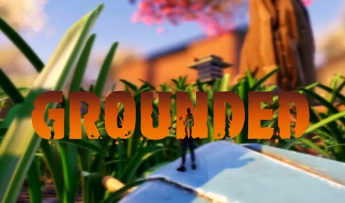 Grounded recevra une démo pour Xbox One et PC pendant le Summer Game Festival