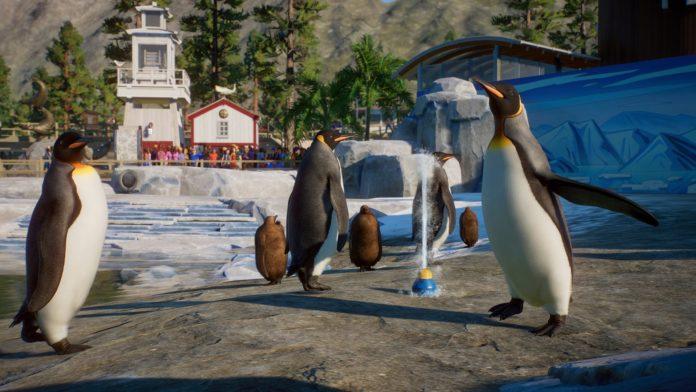 Planet Zoo reçoit des pingouins, des loutres et une nouvelle activité de `` discussions sur les animaux '' le 8 décembre