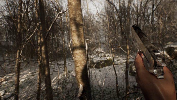 Le jeu d'horreur de survie Abandoned consiste à se réveiller seul et à chasser dans les bois